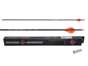 Skylon Edge Carbon Arrows Set 12